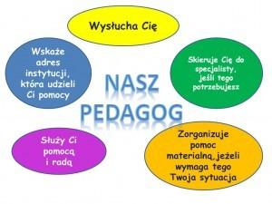 pedagog_baner